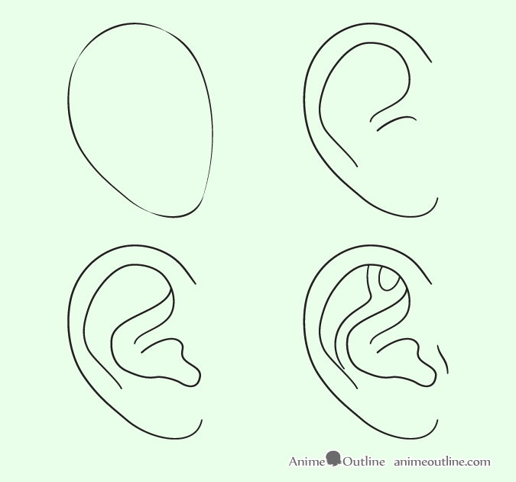 How To Draw Anime And Manga Ears | AnimeOutline