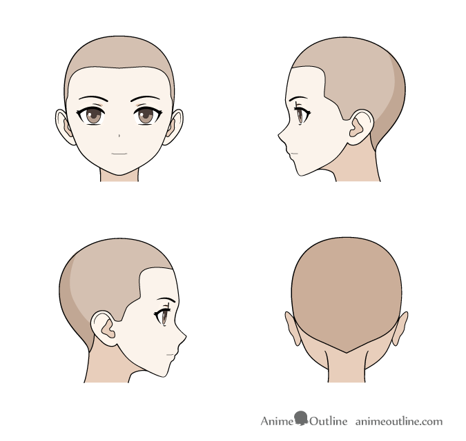 Anime hairline female