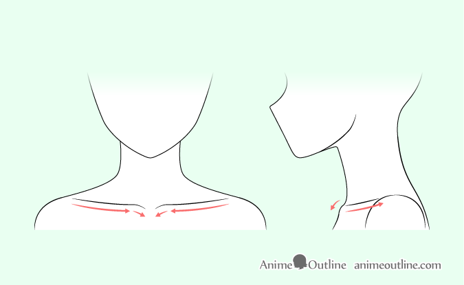 Anime collar bones drawing