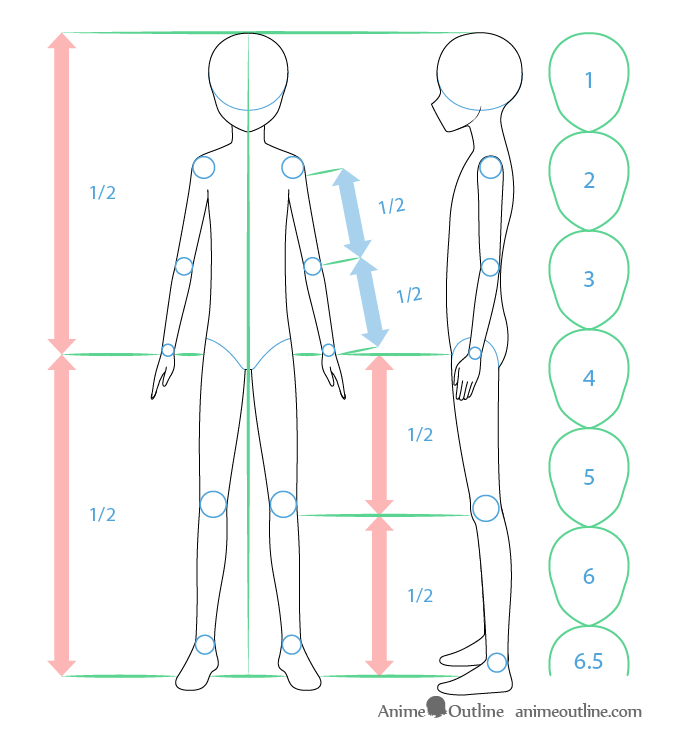 Anime boy body proportions drawing