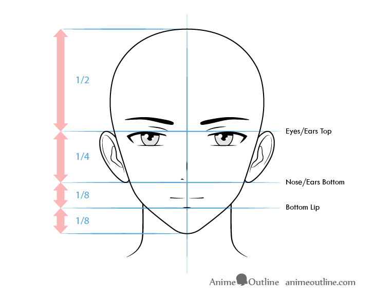 Anime male character face proportions