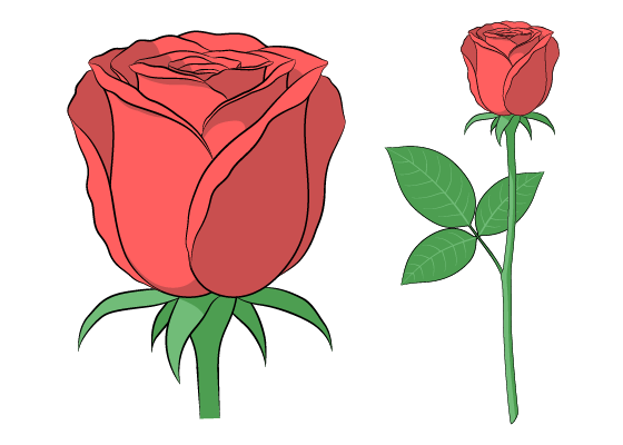 Anime rose drawing