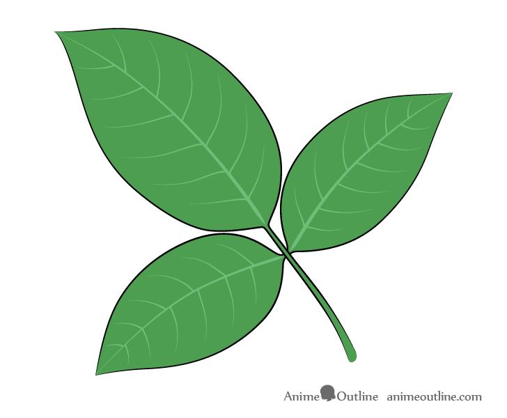 Rose leaves drawing