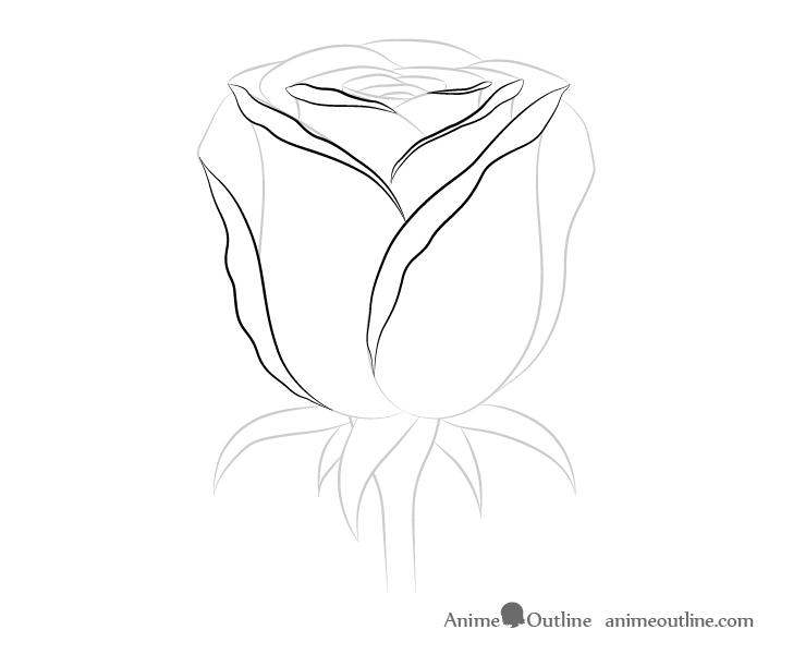 Rose petals details drawing