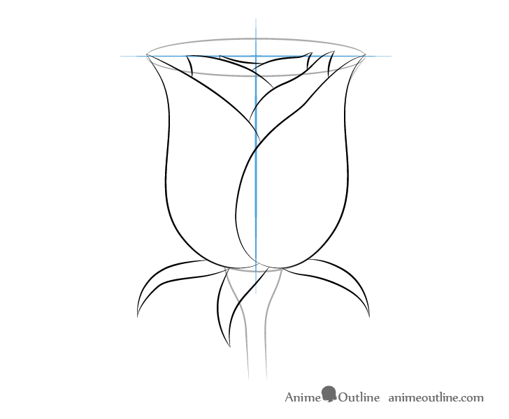 Rose front sepals drawing