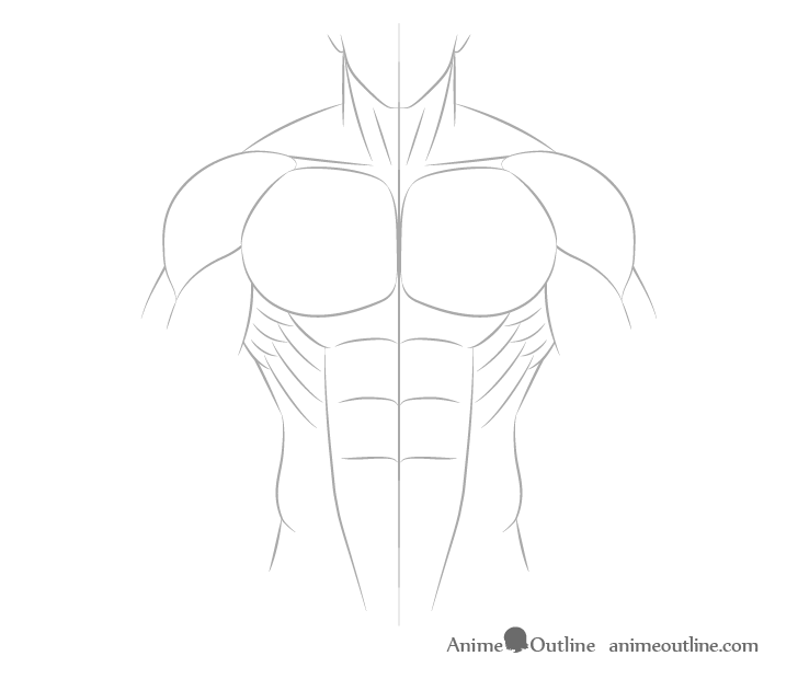 Anime male body side muscles drawing