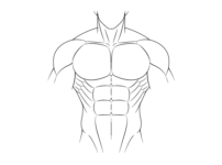 How to Draw Anime Muscular Male Body Step by Step